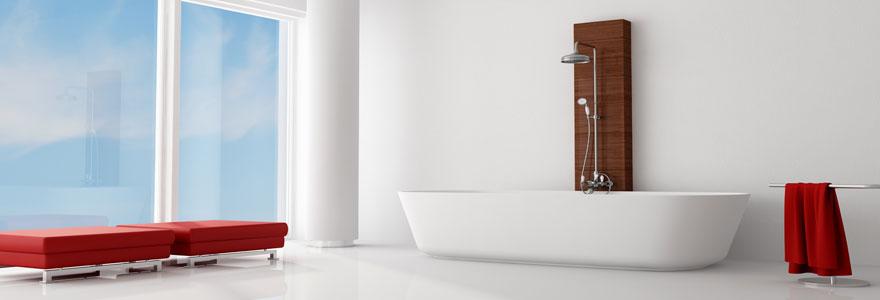 Conseils sur l'utilisation d'une colonne de douche